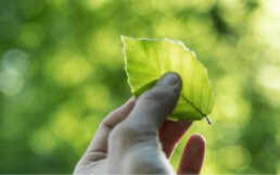 A 3M integrará sustentabilidade em cada novo produto